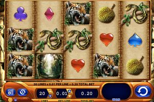 amazon queen video slot